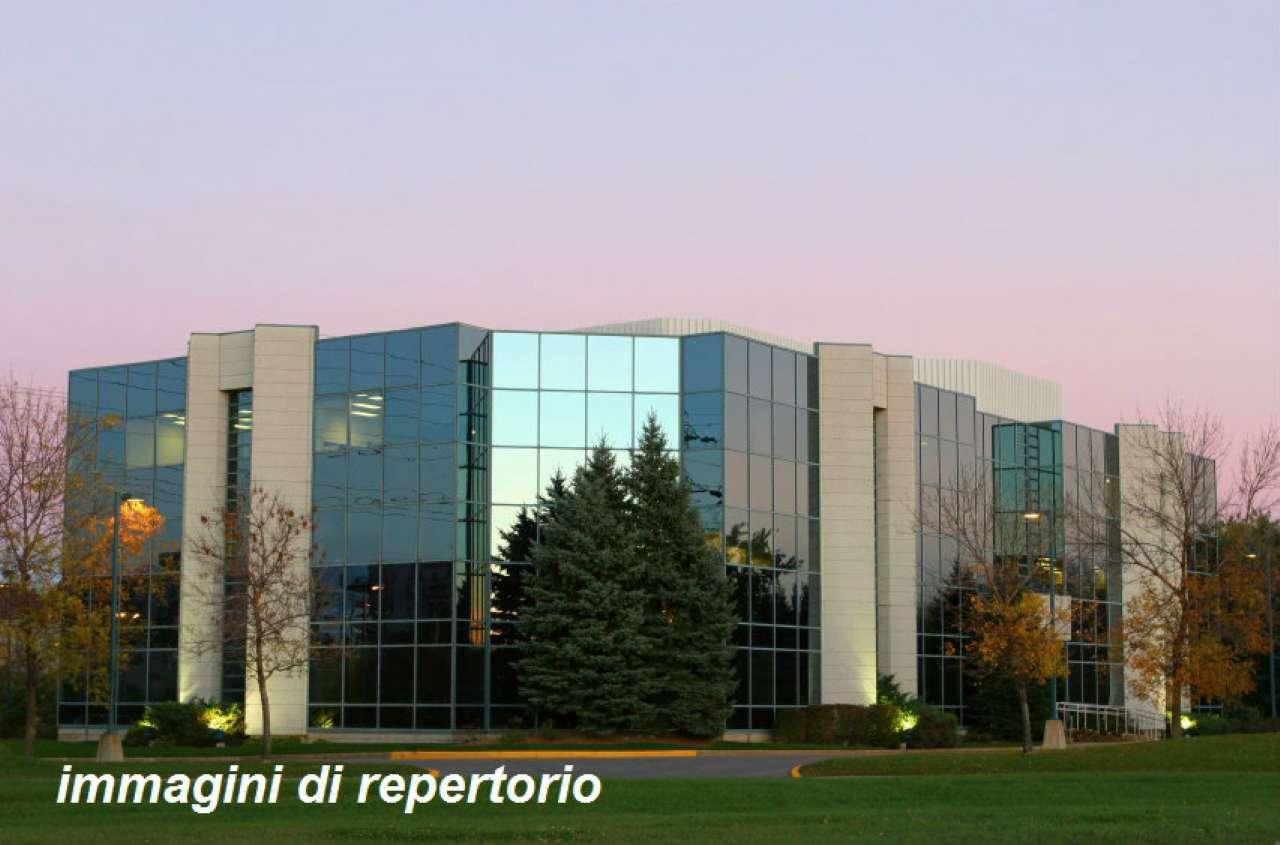 Cernusco sul Naviglio Vendita CAPANNONE Immagine 0