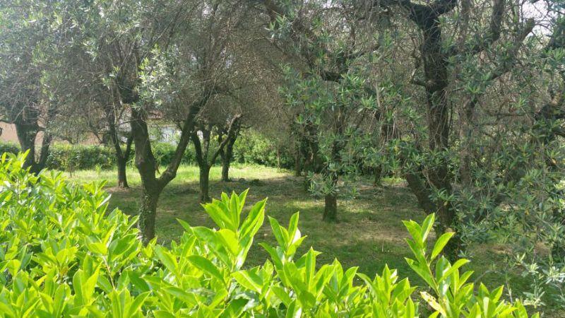 Soluzione Indipendente in vendita a Ortonovo, 10 locali, prezzo € 450.000 | Cambio Casa.it