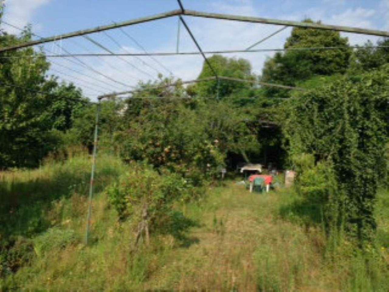 Terreno Agricolo in Vendita a Rivoli