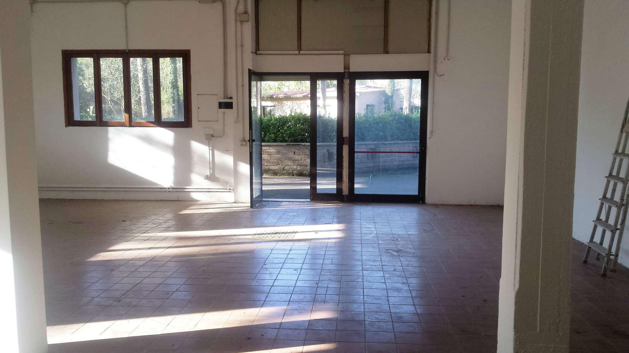 Laboratorio in affitto a Roma, 2 locali, zona Zona: 18 . Ardeatino - Grotta Perfetta - Fonte Meravigliosa, prezzo € 1.100   CambioCasa.it