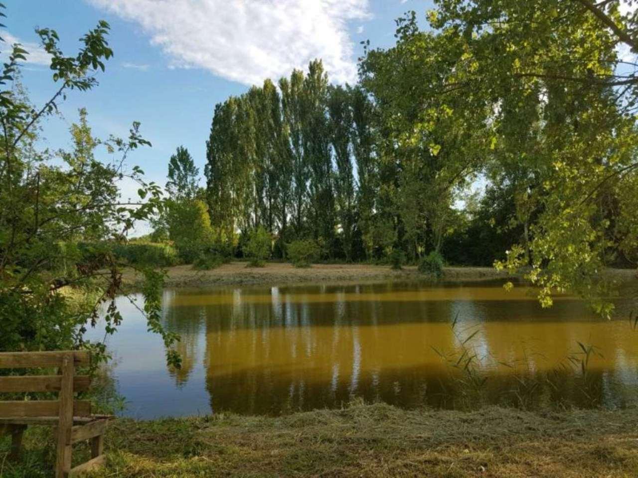 Terreno Agricolo in vendita a Piombino Dese, 9999 locali, Trattative riservate | CambioCasa.it