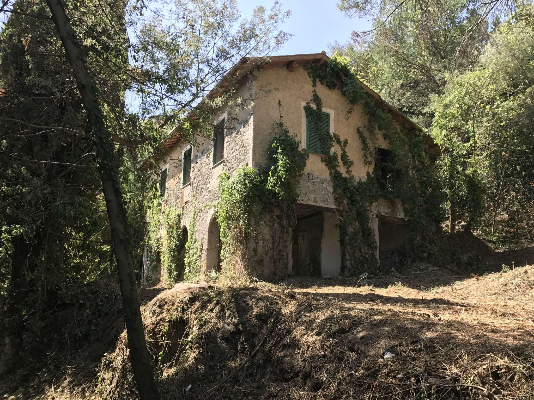 Rustico / Casale in Vendita a Castel Gandolfo