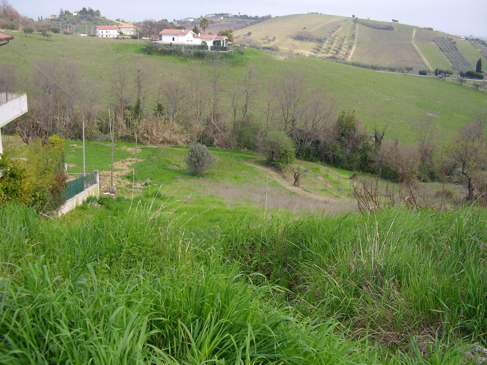 Terreno Edificabile Residenziale in vendita a Tortoreto, 9999 locali, prezzo € 45.000 | Cambio Casa.it