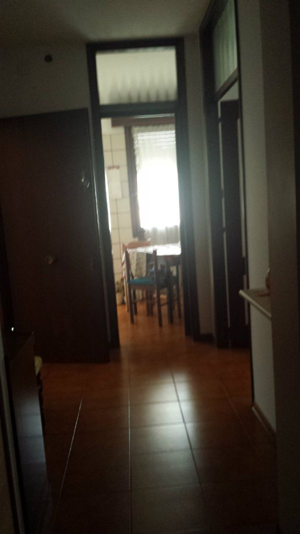 Padova Affitto APPARTAMENTO Immagine 2