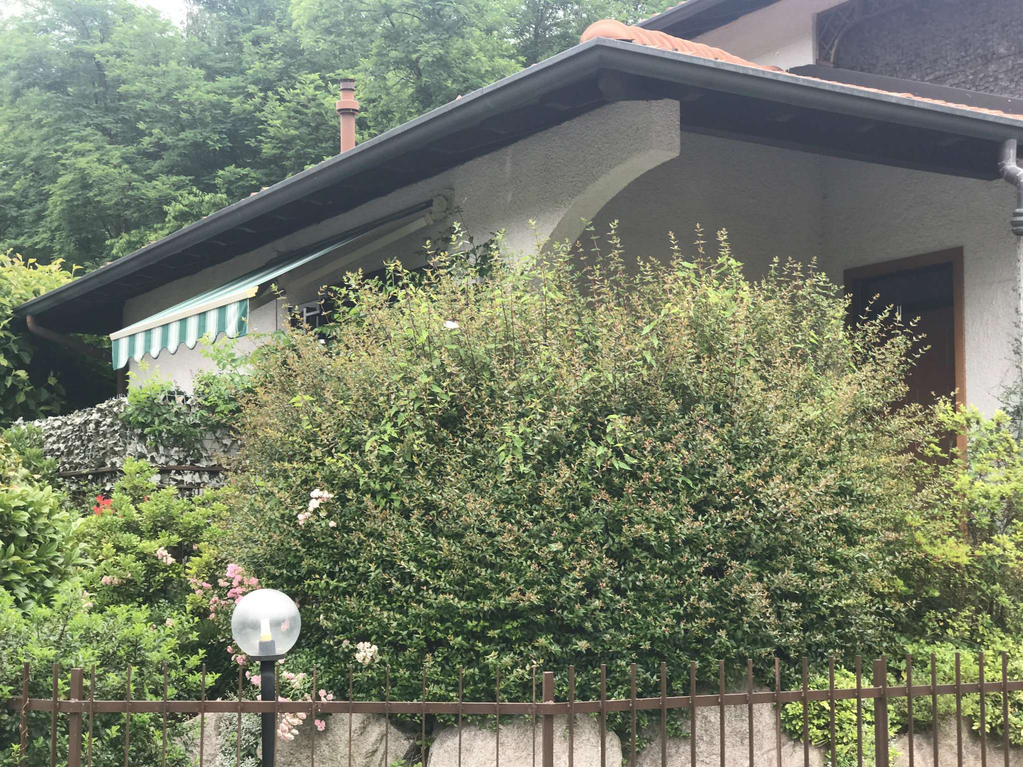 Villa in Vendita a Mornago