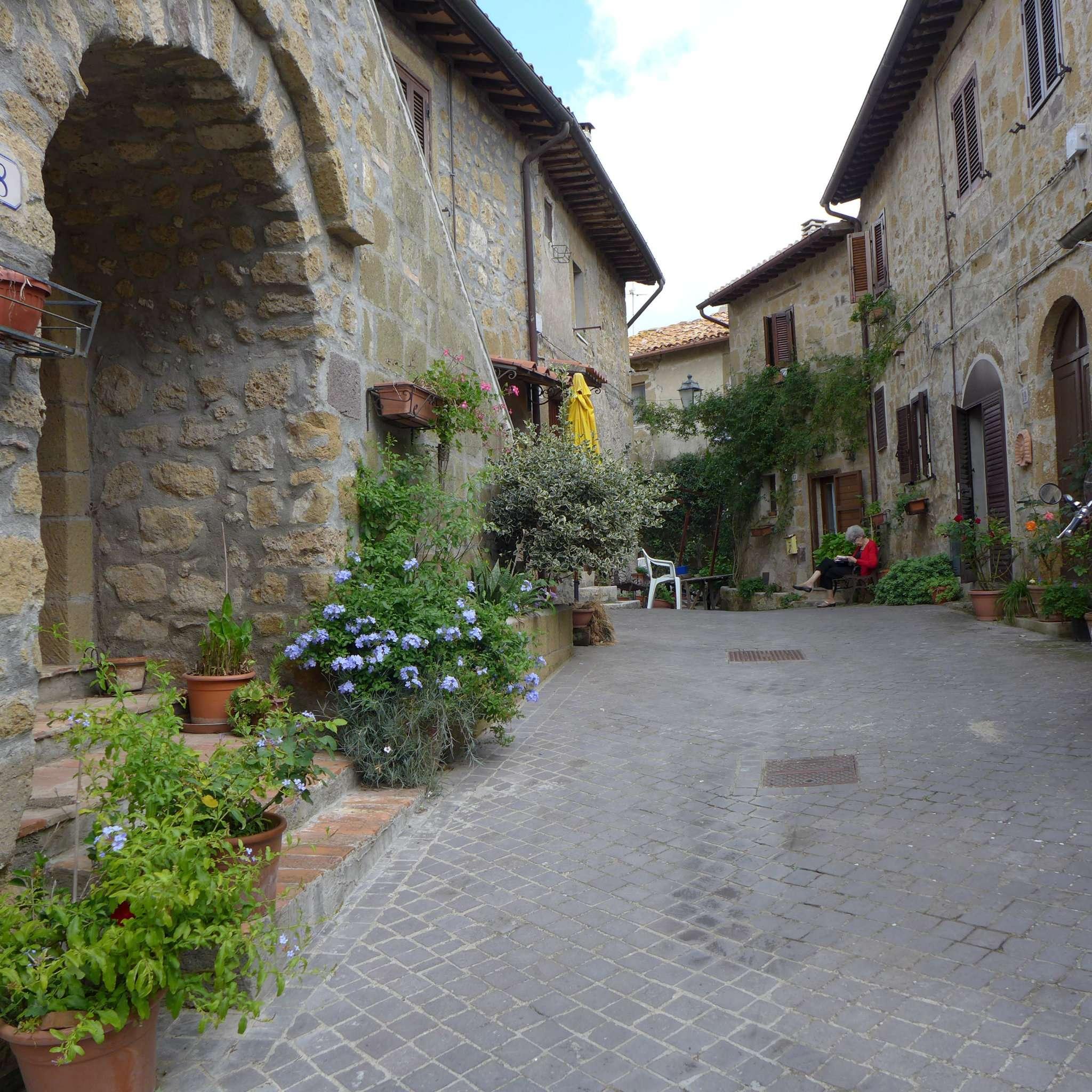 Appartamento in vendita a Cellere, 5 locali, prezzo € 145.000 | CambioCasa.it