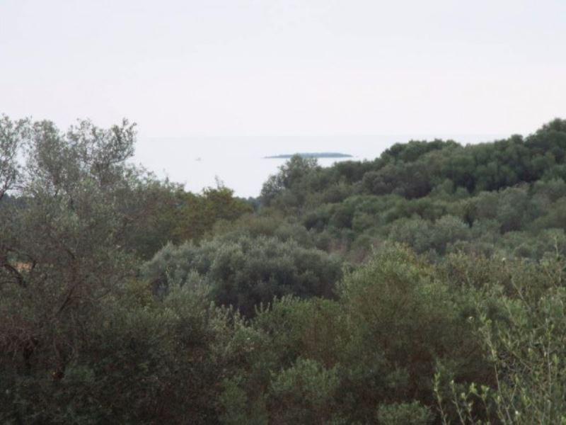 Bilocale Orbetello Strada Statale 1 Via Aurelia 1