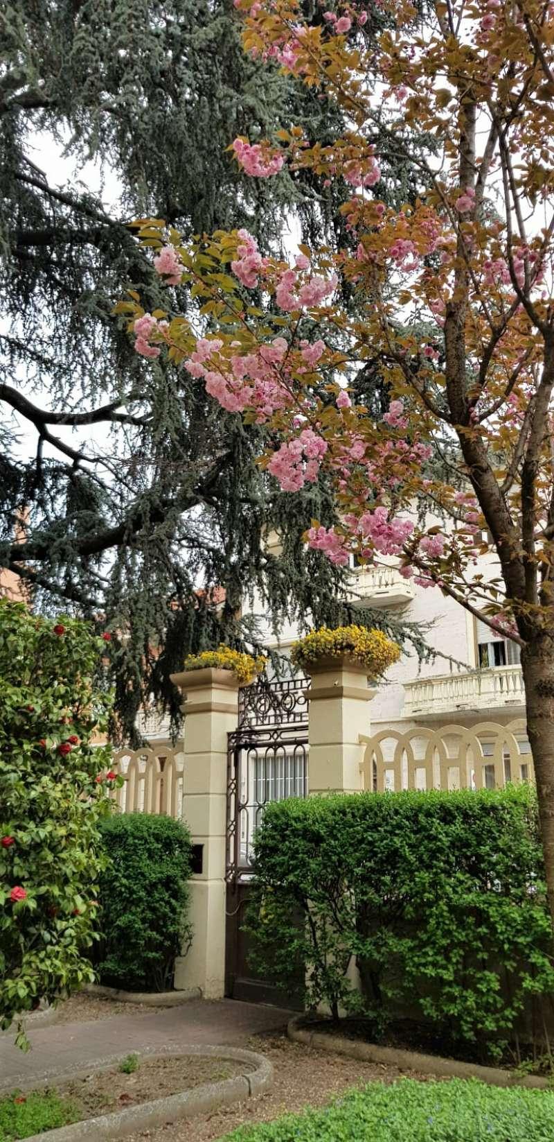 Torino Torino Affitto APPARTAMENTO » appartamentio torino