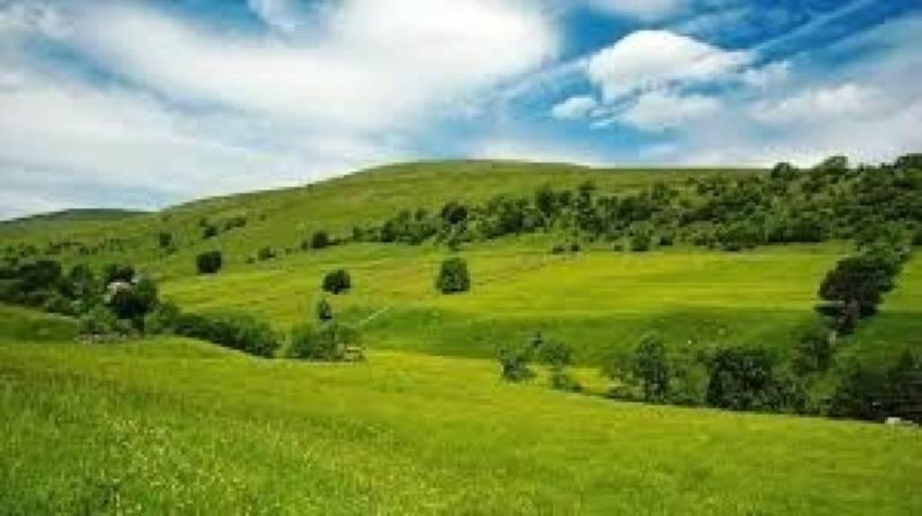 Terreno Edificabile Residenziale in vendita a Gorla Maggiore, 9999 locali, prezzo € 110.000 | Cambio Casa.it