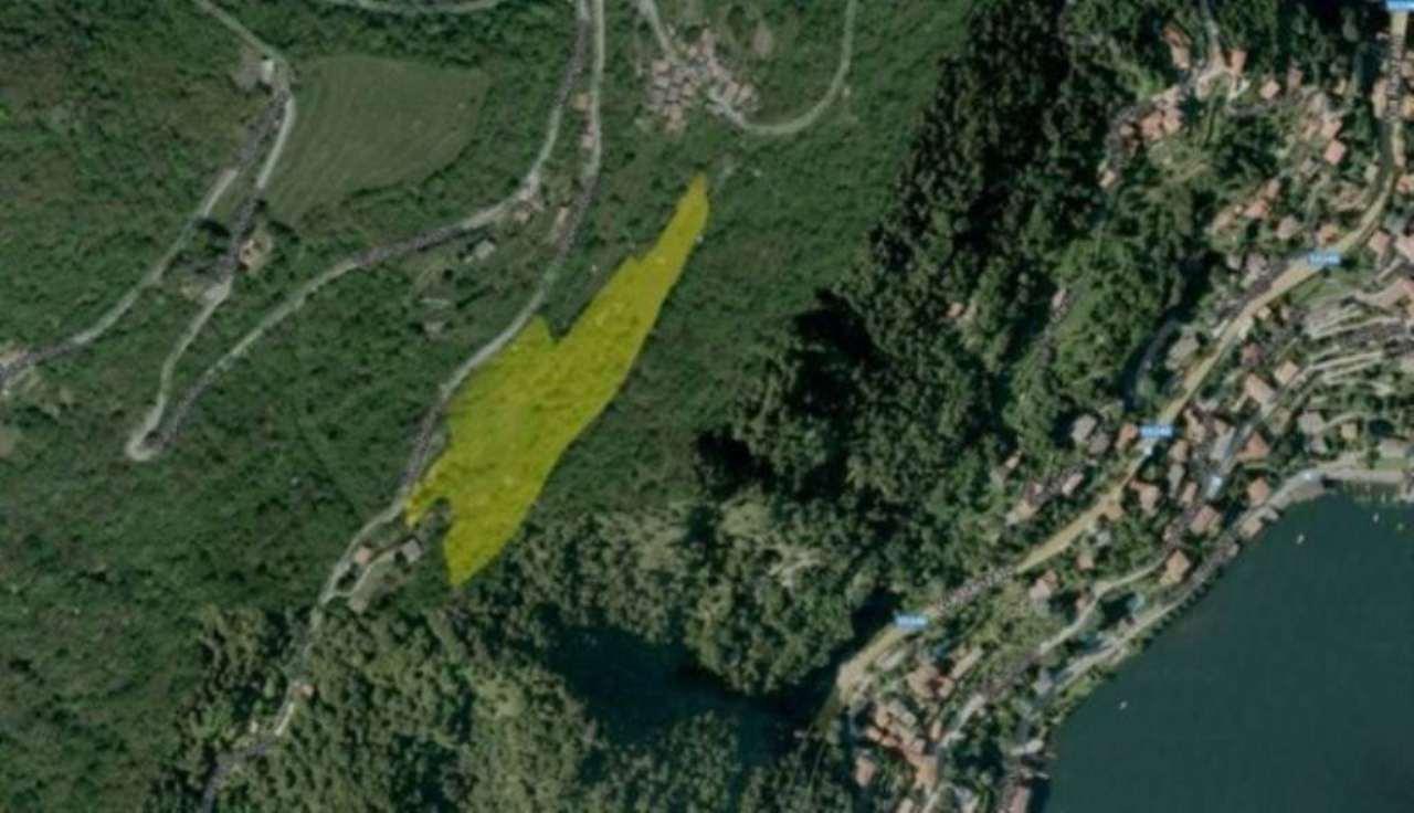 Terreno Agricolo in vendita a Moltrasio, 9999 locali, Trattative riservate | CambioCasa.it