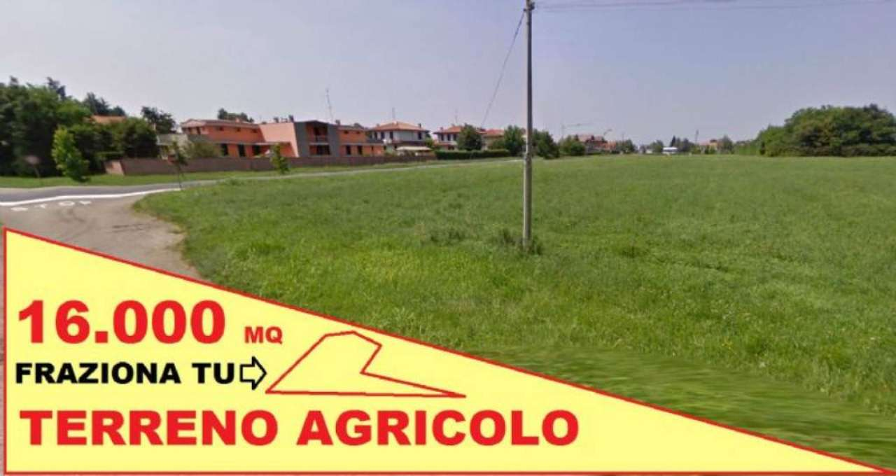 Terreno Agricolo in Vendita a Gorla Minore