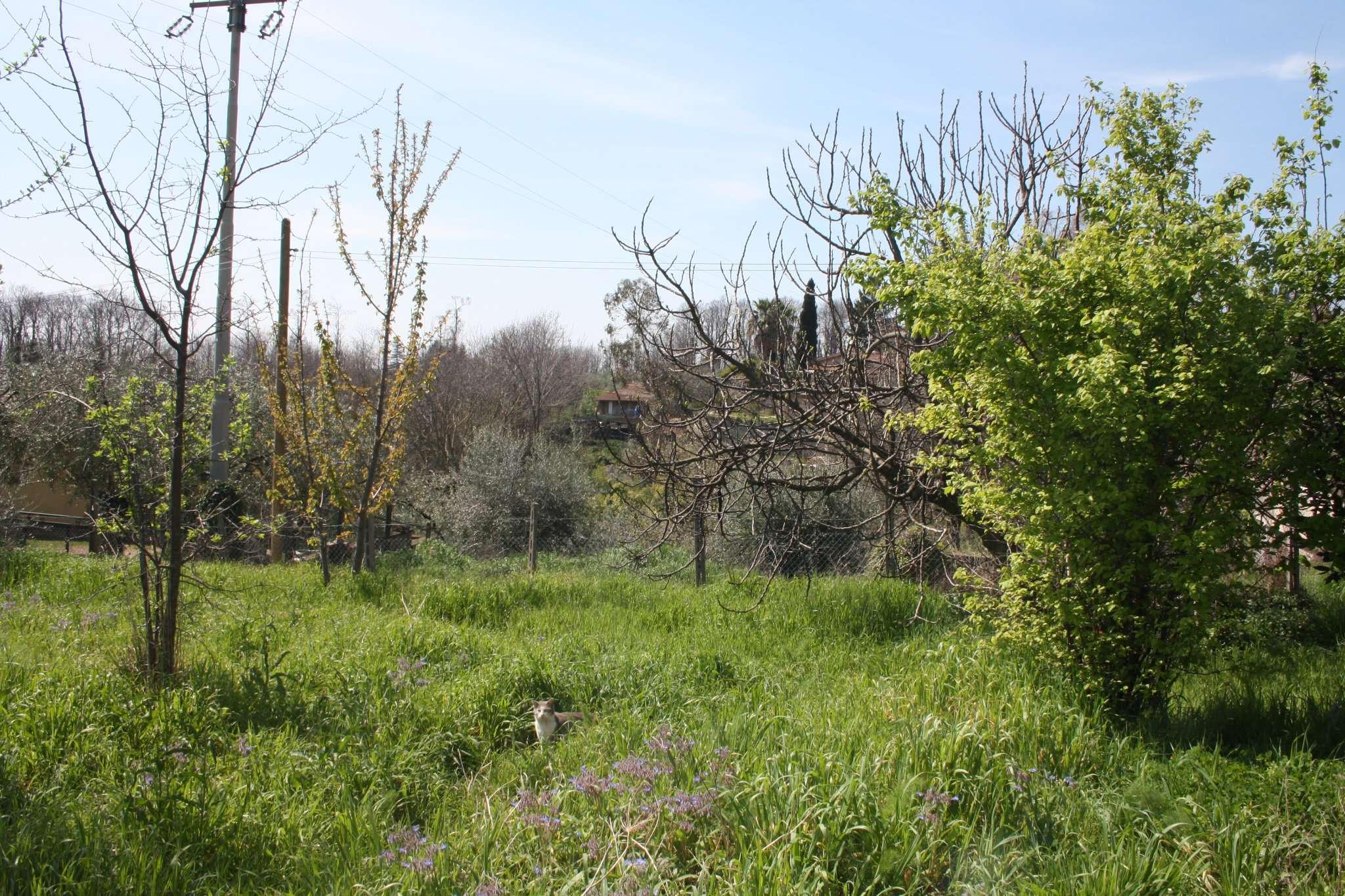 Terreno Edificabile Residenziale in vendita a Velletri, 9999 locali, prezzo € 39.000 | CambioCasa.it