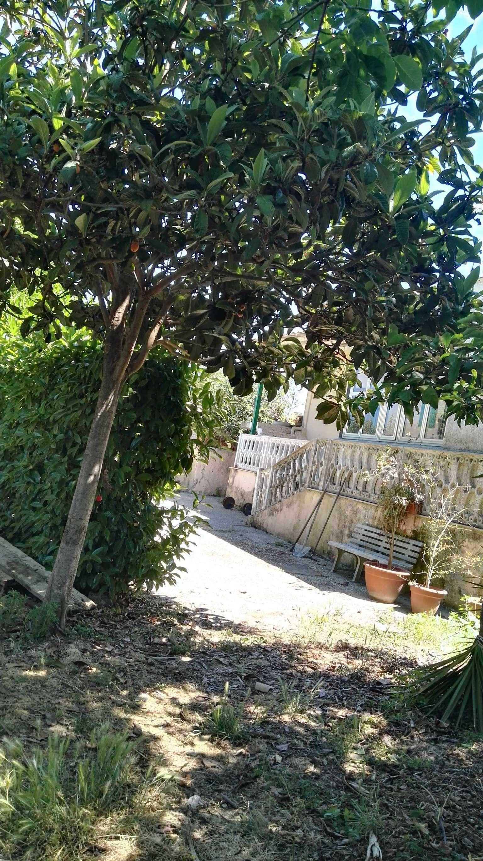 Villa in Vendita a Bacoli