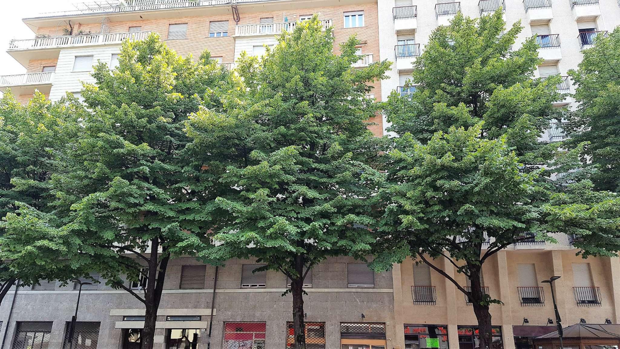 Appartamento in vendita Zona Crocetta, San Secondo - via Loria Achille 6 Torino