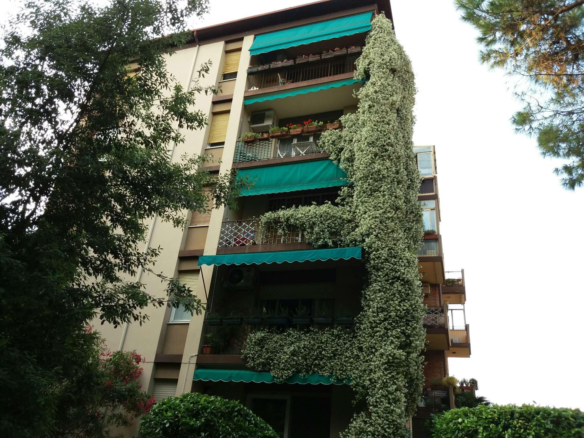 Appartamento PADOVA vendita  SPECOLA  Agenzia Immobiliare SAN LEONARDO