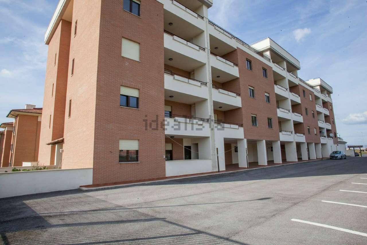 Monolocale in affitto a Roma in Via Cardinale Luigi Traglia