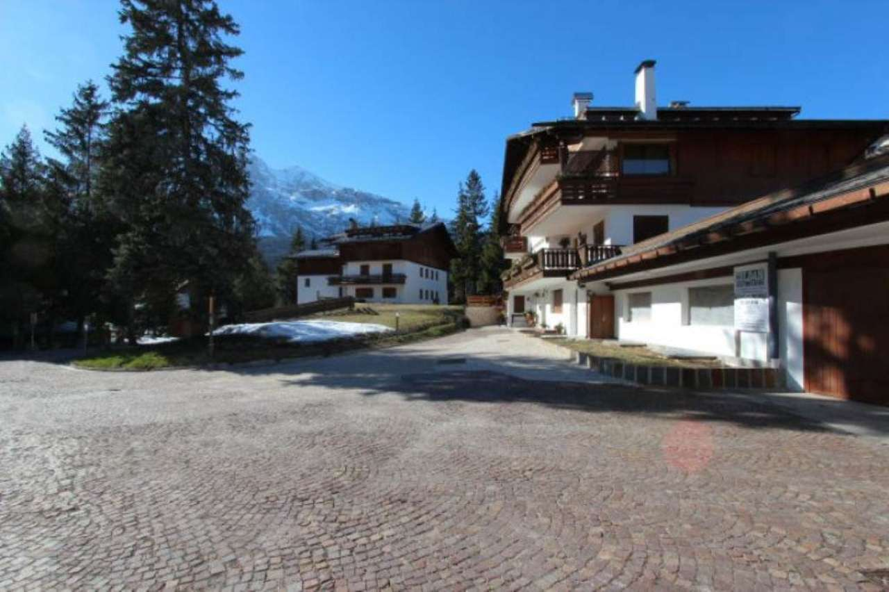 Appartamento in vendita a Cortina d'Ampezzo, 6 locali, prezzo € 1.100.000 | Cambio Casa.it