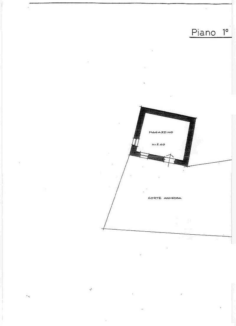 Cogorno Vendita CASALE / RUSTICO / CASA / CASCINA Immagine 1