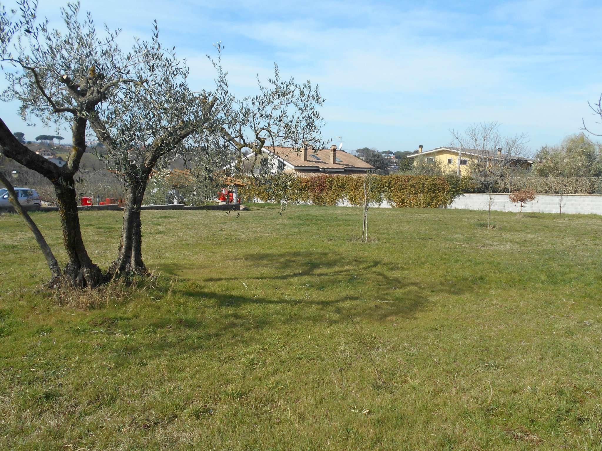 Terreno Agricolo in vendita a Zagarolo, 1 locali, prezzo € 53.000 | Cambio Casa.it