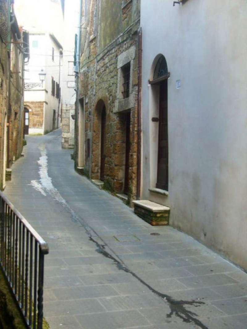 Appartamento in Vendita a Pitigliano