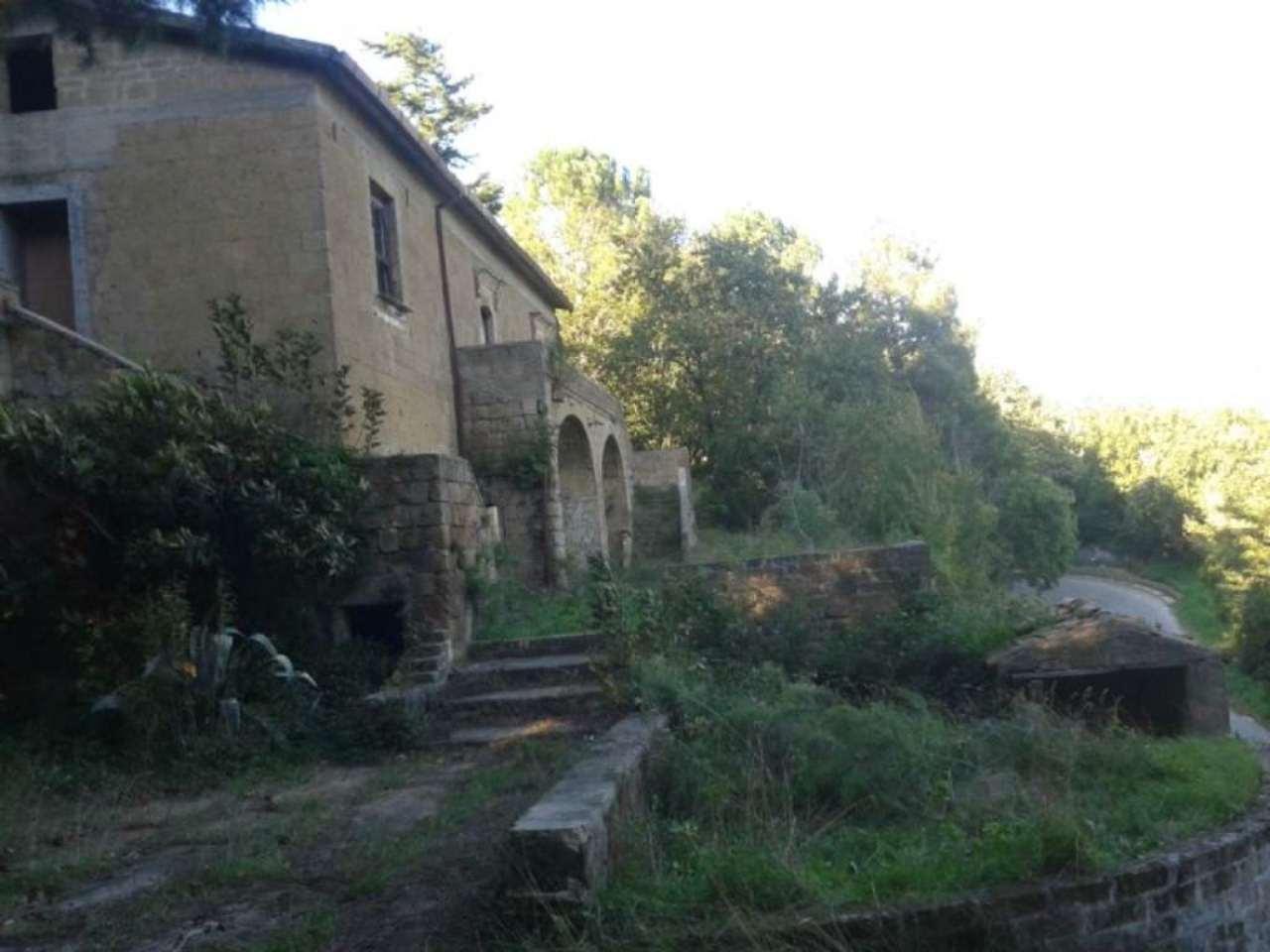 Terreno Agricolo in Vendita a Sant'Agata De' Goti