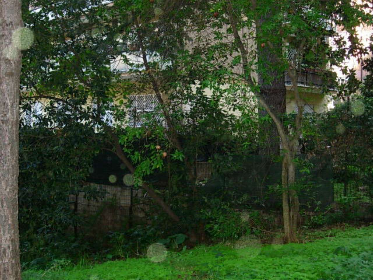 Monolocale in affitto a Roma in Via Luigi Lilio