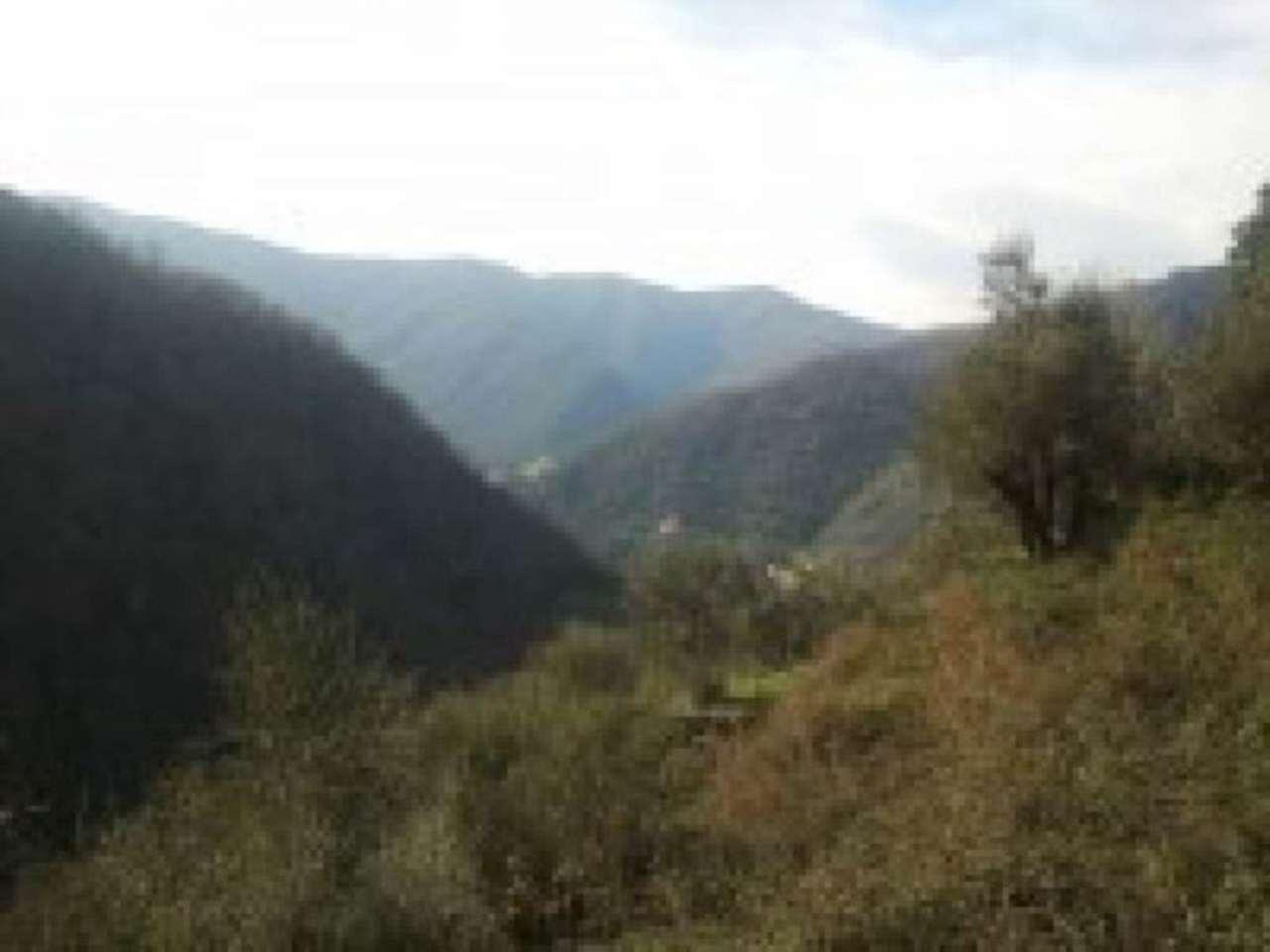 Terreno Edificabile Residenziale in vendita a Avegno, 6 locali, prezzo € 75.000 | Cambio Casa.it