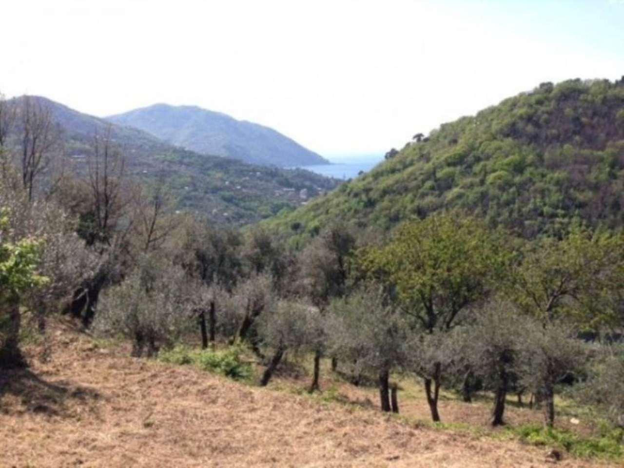 Terreno Edificabile Residenziale in vendita a Recco, 6 locali, prezzo € 90.000 | CambioCasa.it