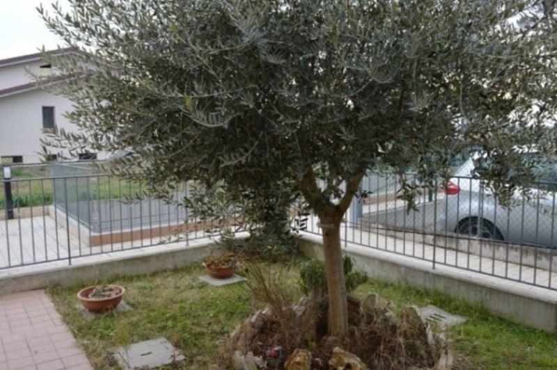 Bilocale Forli Via Veclezio 9