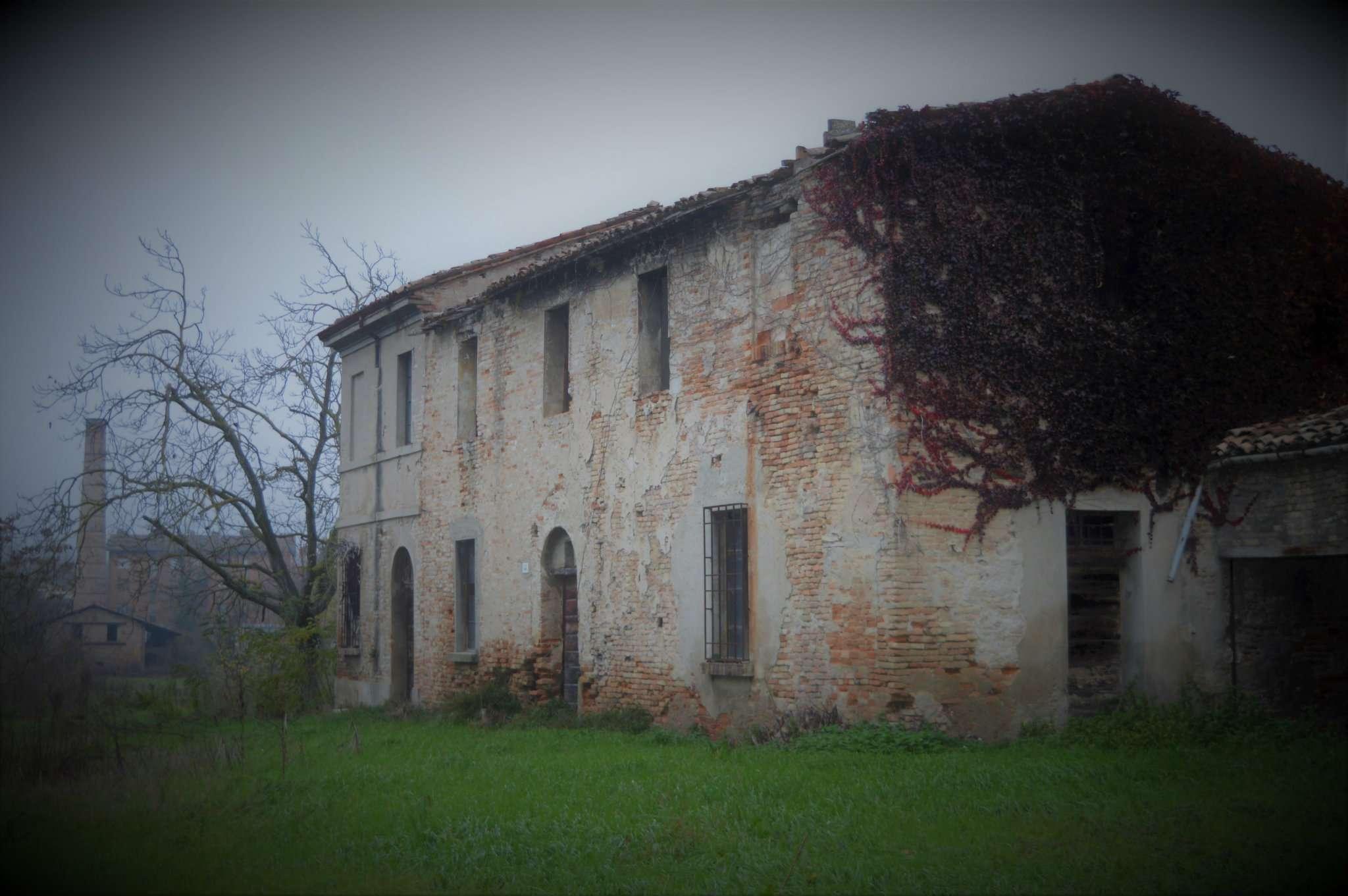 Altro in Vendita a Forlì