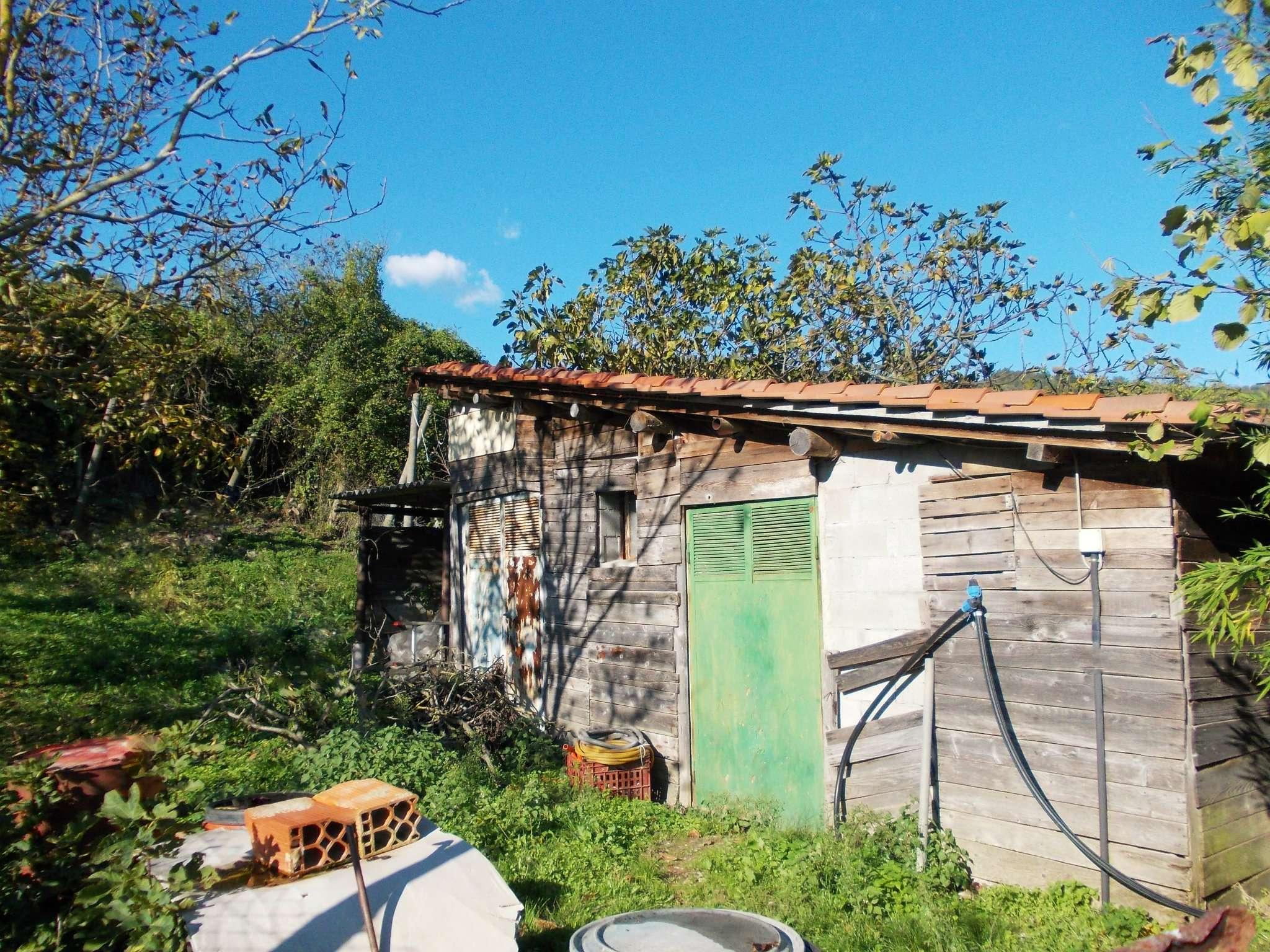 Terreno Agricolo in vendita a Pontassieve, 1 locali, prezzo € 49.000 | Cambio Casa.it
