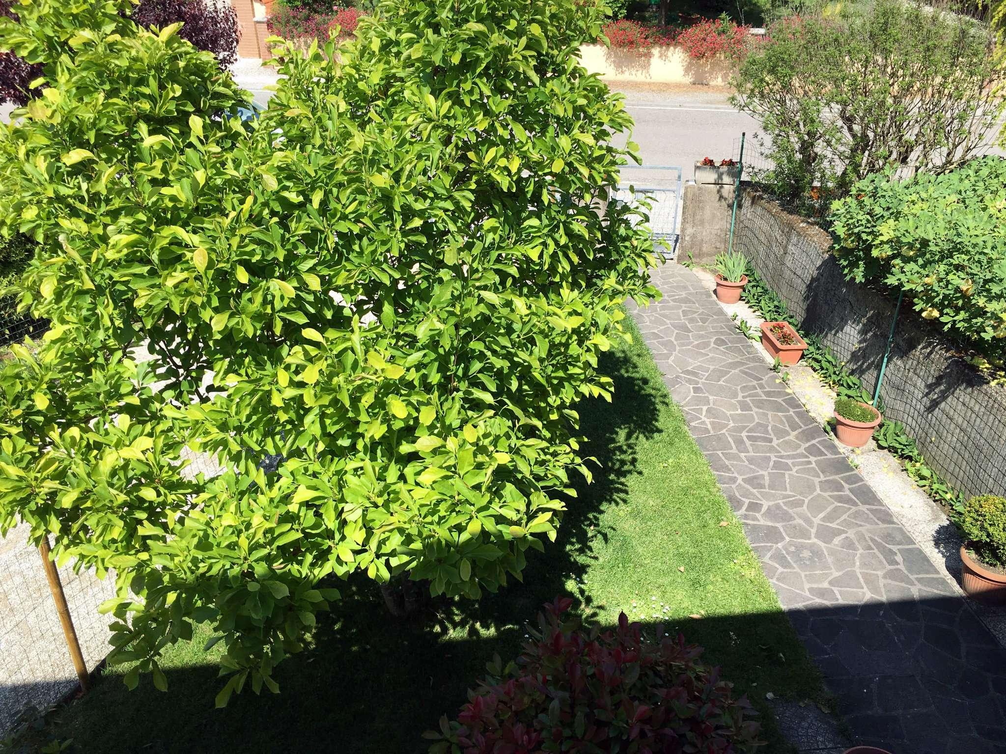 Soluzione Indipendente in vendita a Ravenna, 8 locali, prezzo € 280.000   Cambio Casa.it