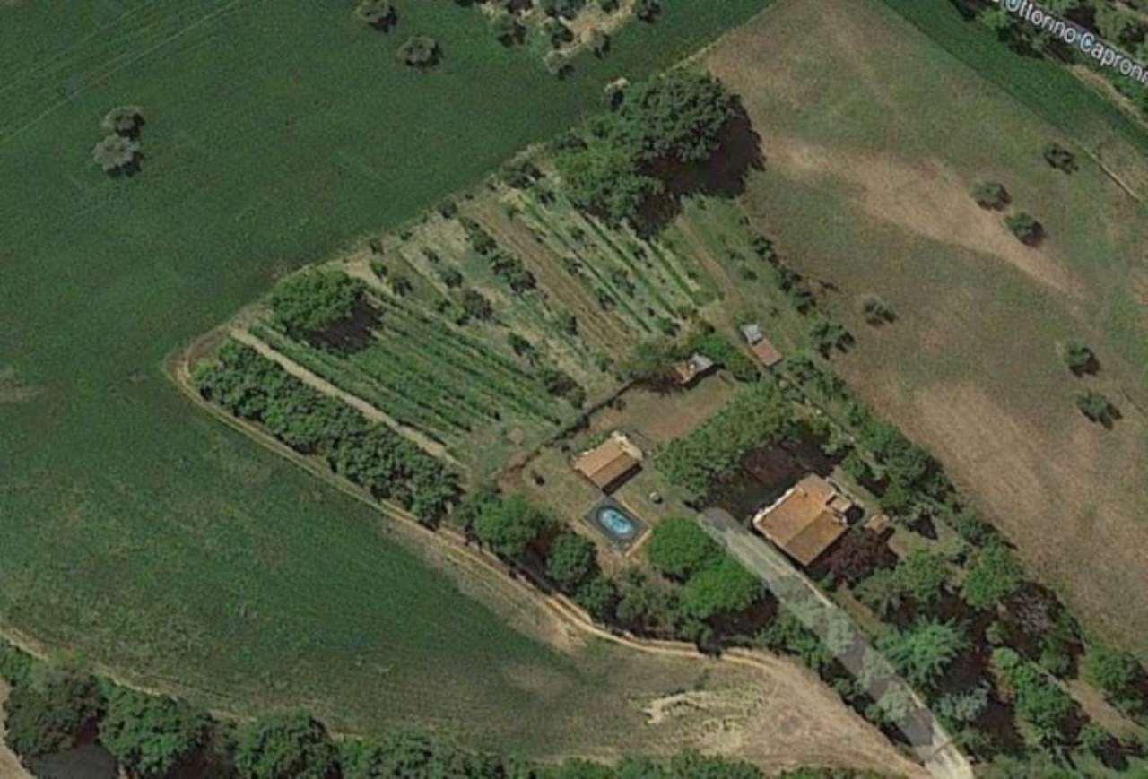 Terreno Agricolo in vendita a Poggio Mirteto, 9999 locali, prezzo € 120.000 | Cambio Casa.it