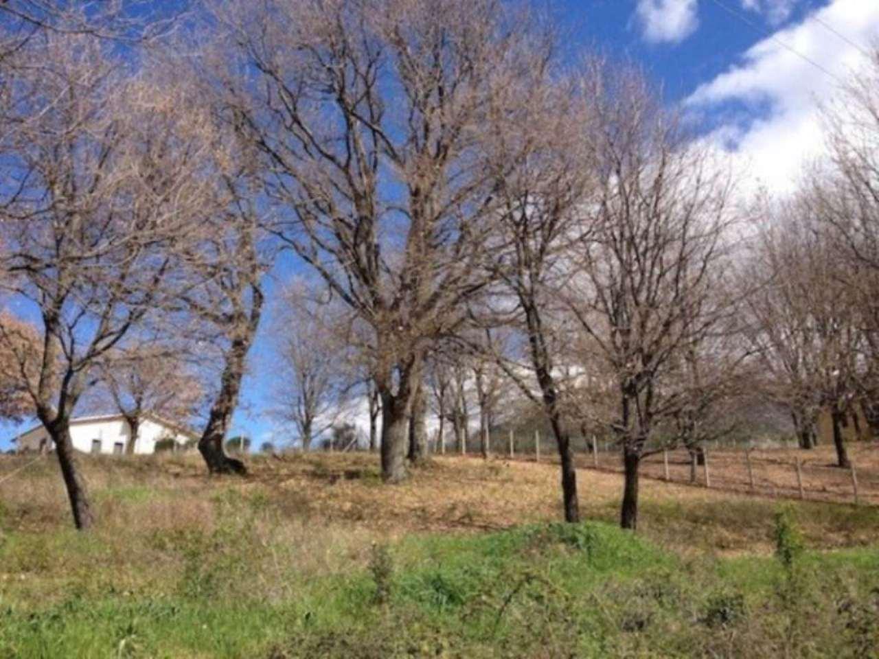 Terreno Edificabile Residenziale in vendita a Casperia, 9999 locali, prezzo € 28.000 | CambioCasa.it