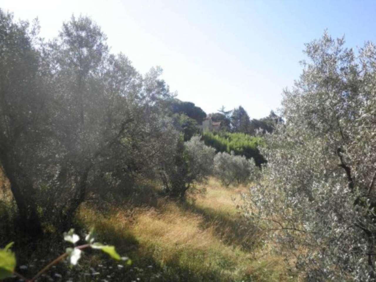 Terreno Edificabile Residenziale in Vendita a Cantalupo in Sabina
