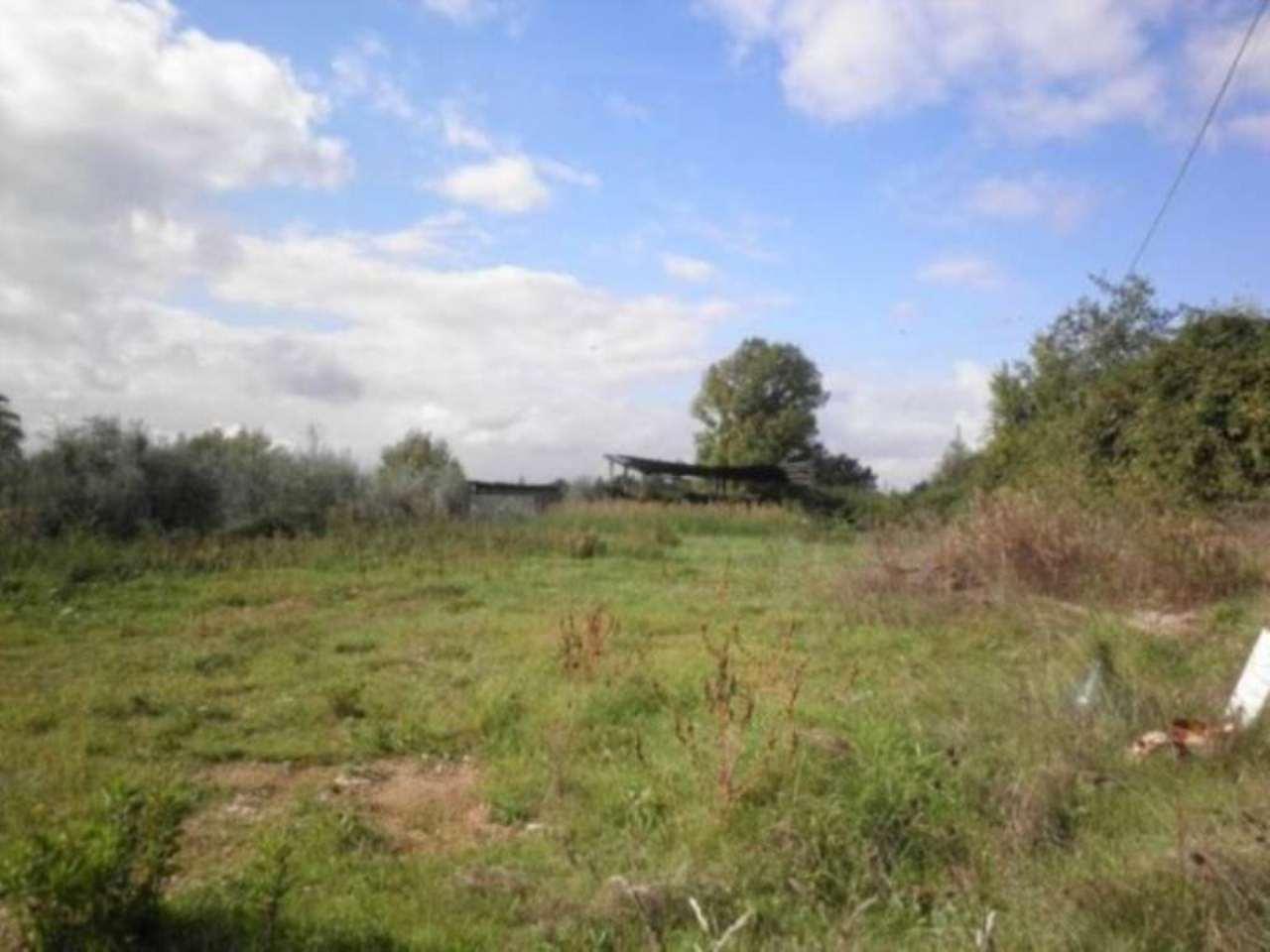 Terreno Edificabile Residenziale in Vendita a Tarano