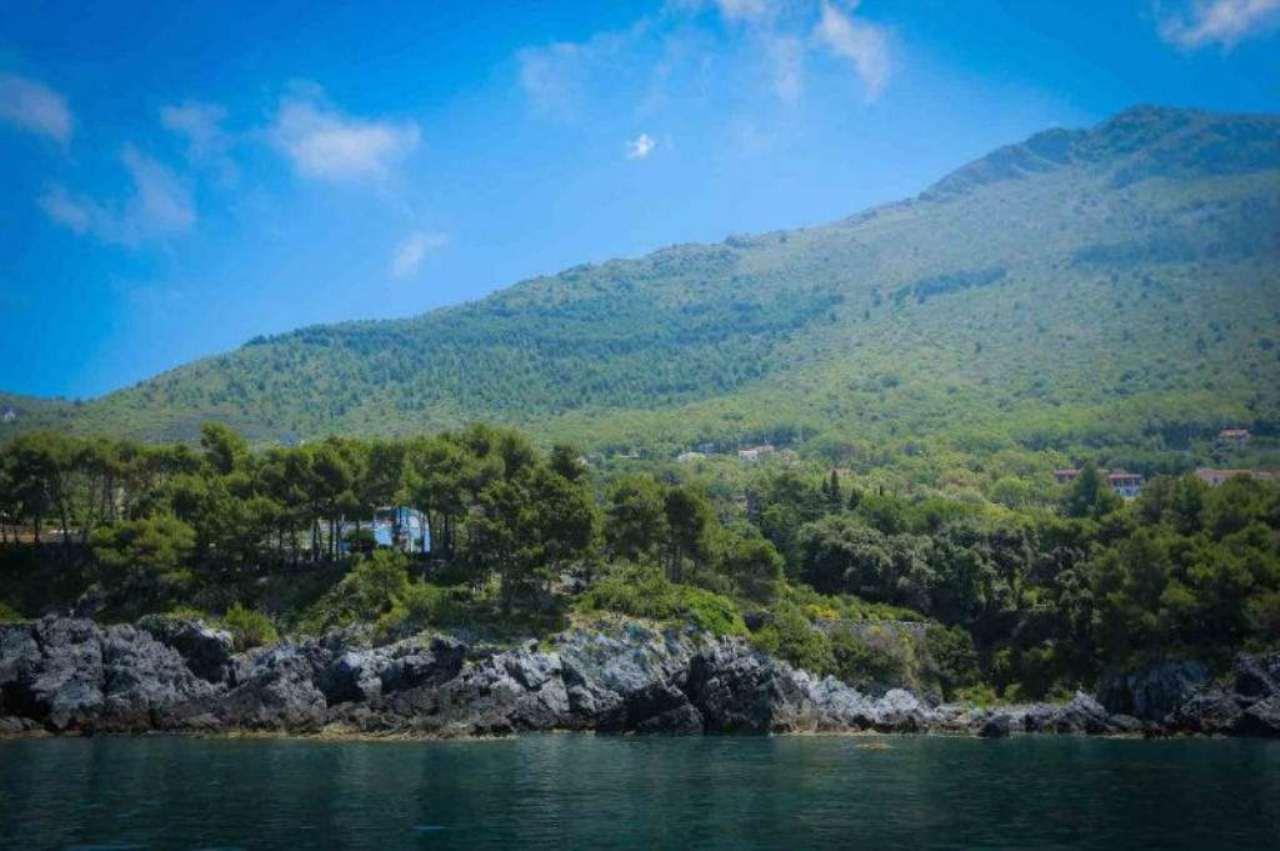 Villa in affitto a Maratea, 30 locali, Trattative riservate | Cambio Casa.it