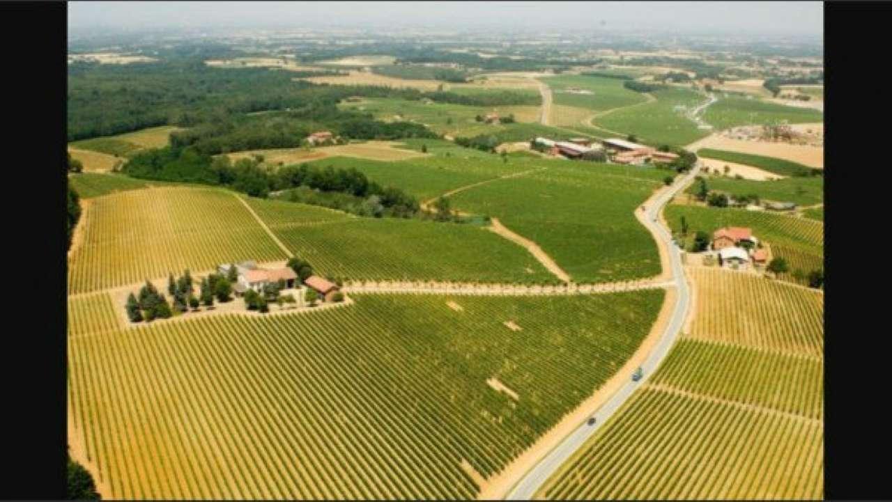 Azienda Agricola in vendita a Mombaruzzo, 9999 locali, Trattative riservate | Cambio Casa.it