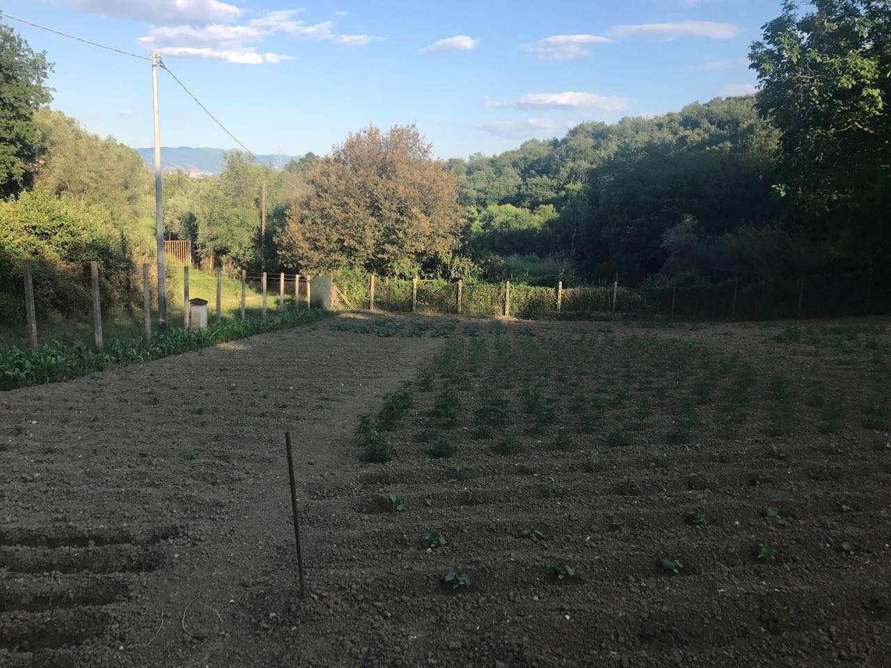 Terreno Agricolo in Vendita a Fonte Nuova