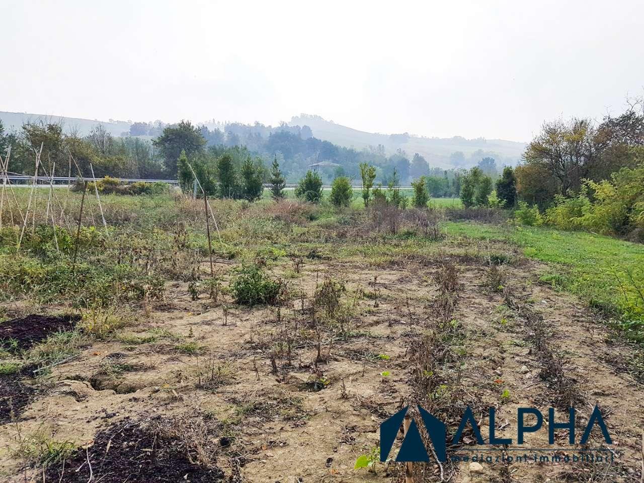 Terreno Agricolo in vendita a Castrocaro Terme e Terra del Sole, 9999 locali, prezzo € 59.000   CambioCasa.it
