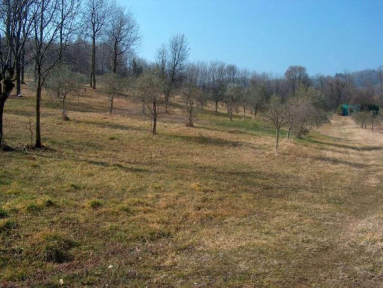 Terreno Agricolo in vendita a Schio, 9999 locali, prezzo € 260.000 | Cambio Casa.it