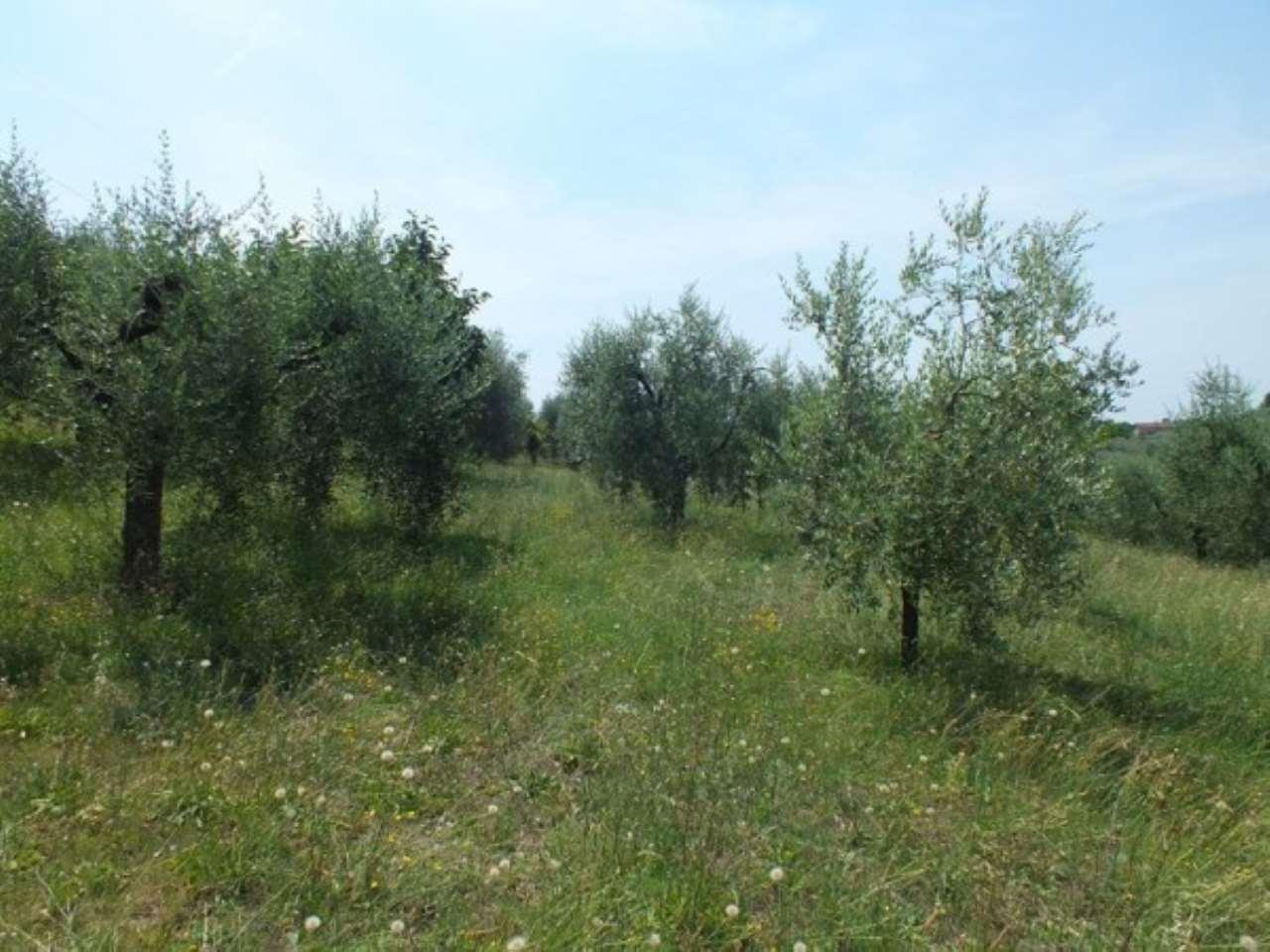 Terreno Agricolo in vendita a Montopoli di Sabina, 9999 locali, prezzo € 50.000 | Cambio Casa.it