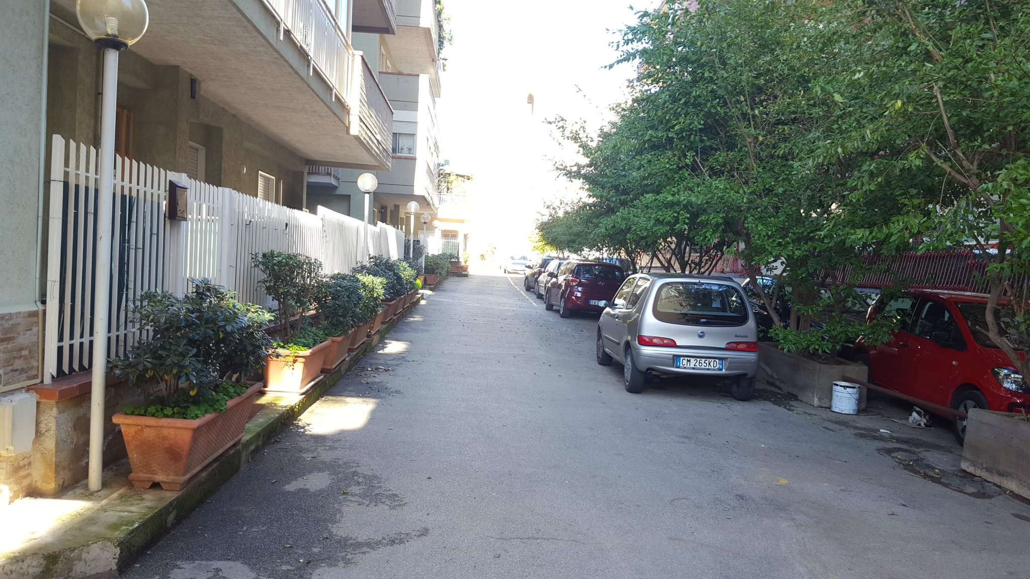 Appartamento in Affitto a Palermo Periferia: 2 locali, 60 mq