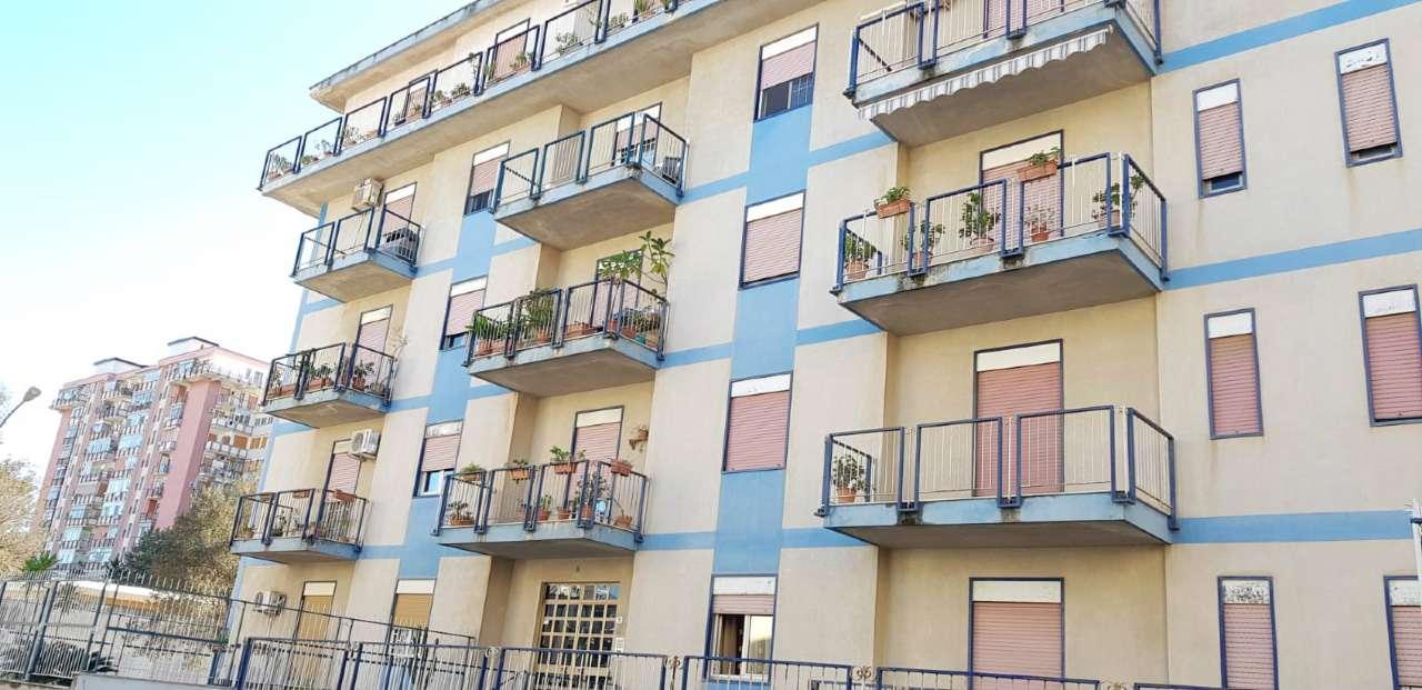 Appartamento in Vendita a Palermo Periferia:  5 locali, 145 mq  - Foto 1