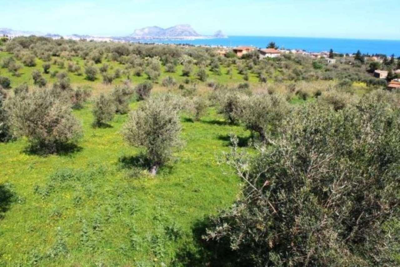 Terreno Agricolo in vendita a Altavilla Milicia, 9999 locali, prezzo € 125.000 | CambioCasa.it