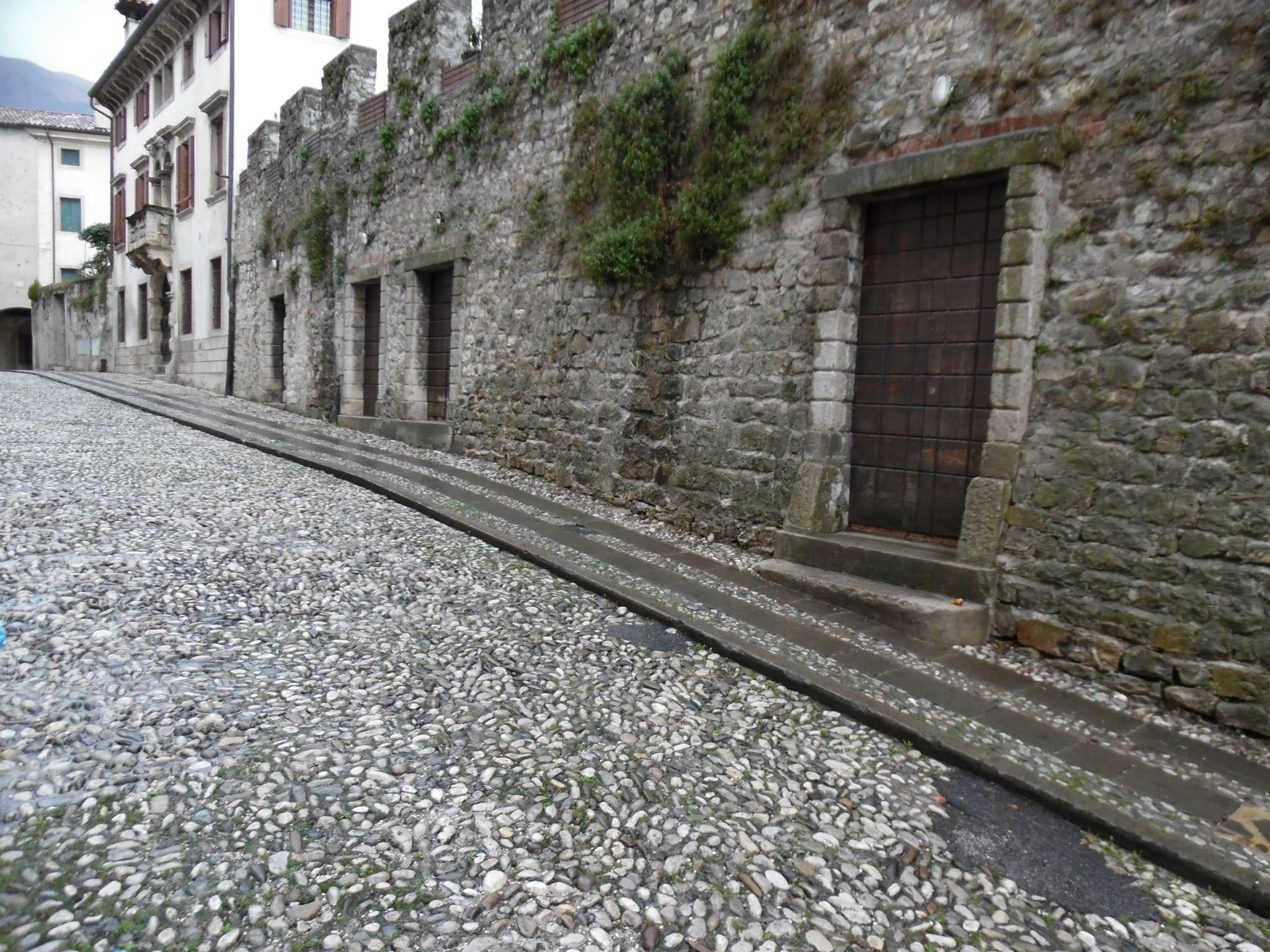Altro in Vendita a Vittorio Veneto
