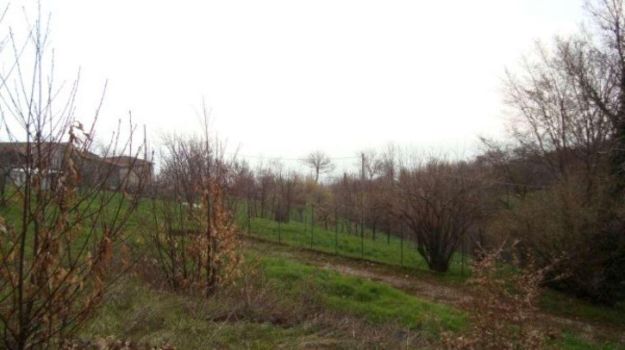 Terreno Edificabile Residenziale in Vendita a Paitone