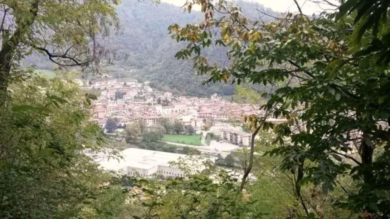 Terreno Agricolo in vendita a Sarezzo, 9999 locali, prezzo € 39.000 | Cambio Casa.it