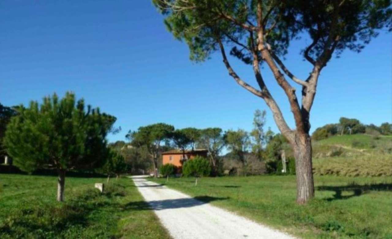 Laboratorio in affitto a Roma, 1 locali, zona Zona: 41 . Castel di Guido - Casalotti - Valle Santa, prezzo € 2.500 | Cambio Casa.it