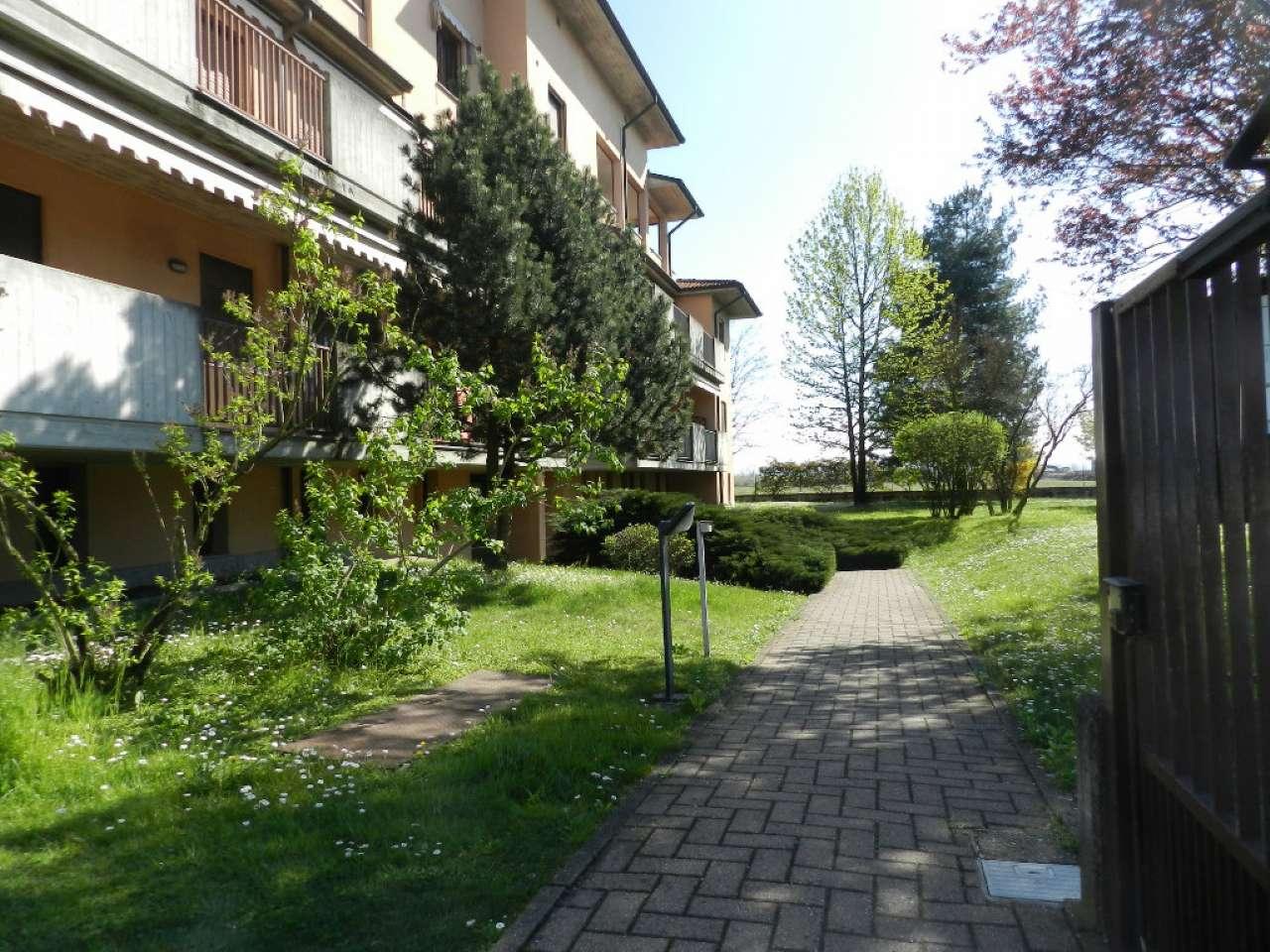 Appartamento in affitto a Belgioioso, 3 locali, prezzo € 550 | CambioCasa.it